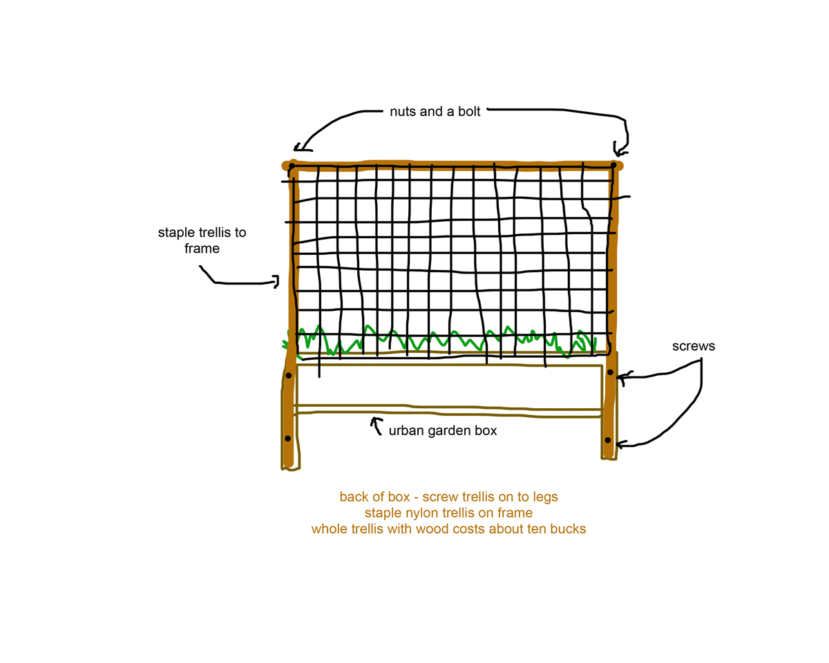 Tomatoes On Two Different Types Of Trellis Raised Urban Gardens Tomato Plant Diagram Heres A Sketch How To Make The Nylon