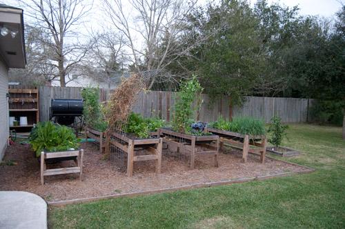 c-raised-urban-gardens-022413-179