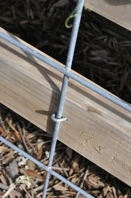 I just use staples to secure it to the garden boxes