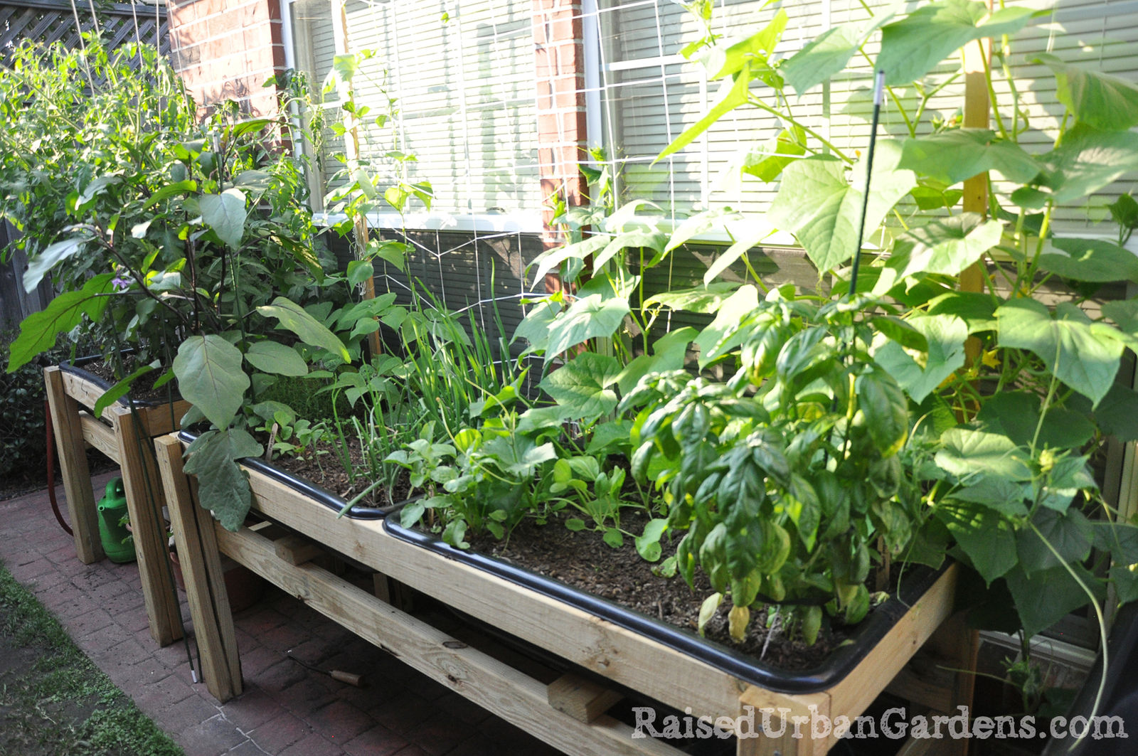 A Raised Garden For A Friend Small Spaces Work Raised