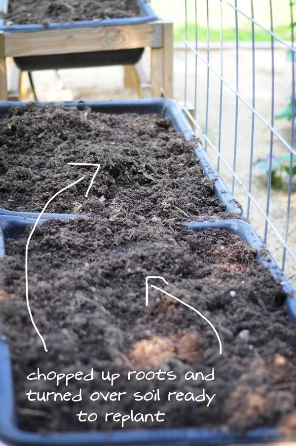 raised-urban-gardens-how-to-garden-flowers-new-soil-and-planting-070213-pic-39